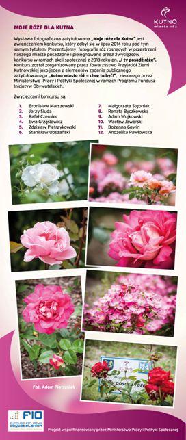 Images: tablice 1-20_Strona_03.jpg