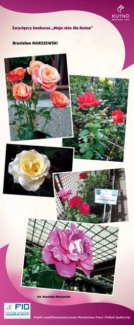 Images: tablice 1-20_Strona_06.jpg