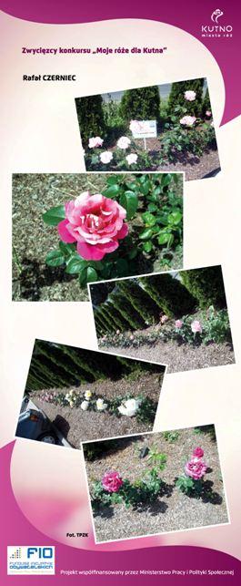 Images: tablice 1-20_Strona_08.jpg