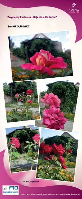 Images: tablice 1-20_Strona_09.jpg