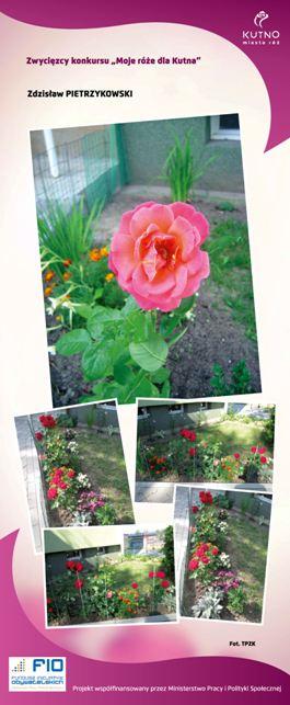 Images: tablice 1-20_Strona_10.jpg