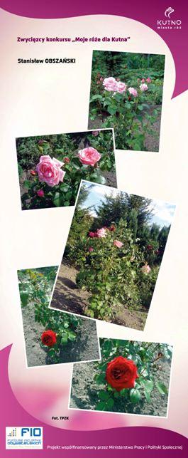 Images: tablice 1-20_Strona_12.jpg