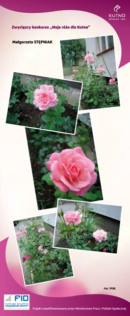 Images: tablice 1-20_Strona_13.jpg