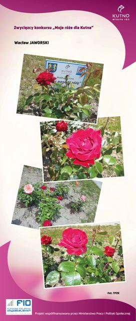 Images: tablice 1-20_Strona_16.jpg