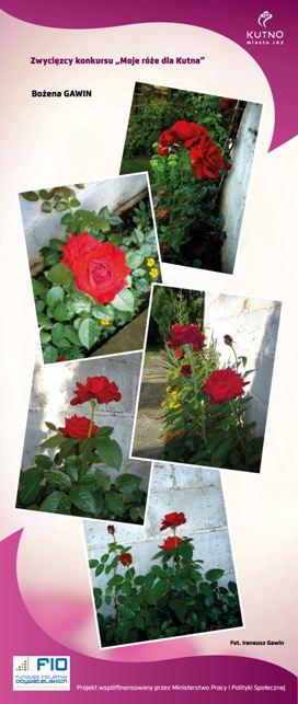 Images: tablice 1-20_Strona_17.jpg