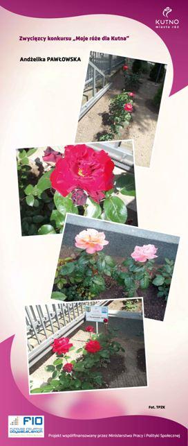Images: tablice 1-20_Strona_18.jpg