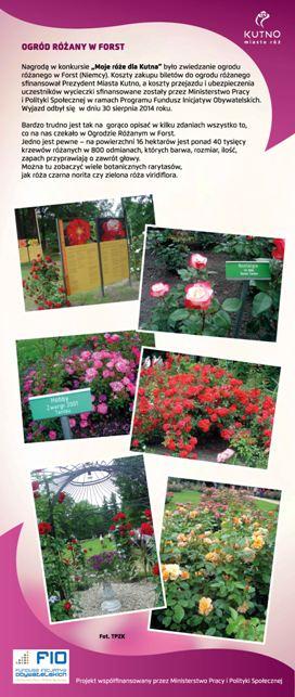 Images: tablice 1-20_Strona_19.jpg