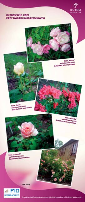 Images: tablice 1-20_Strona_20.jpg